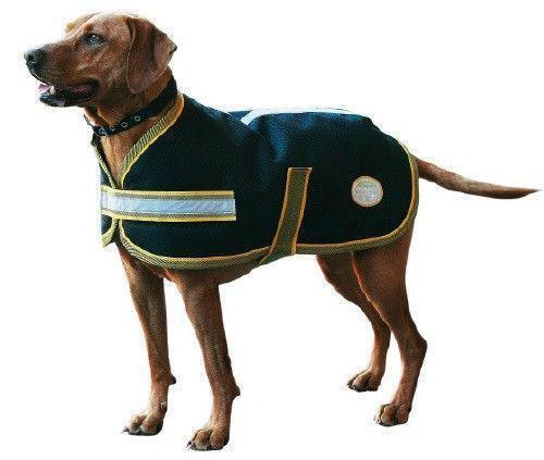 Weatherbeeta Dog Blanket Ebay