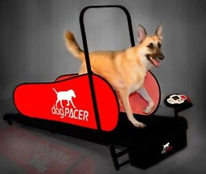 dogPACER LF 3.1 Folding Fitness Dog Treadmill For Dogs Up to 179