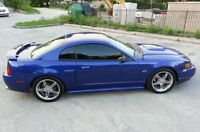 Ford Mustang GT Supercharged *Mint* *low kms* *Last chance*