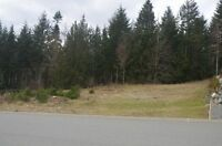 """SPACIOUS, SERVICED LOT IN """"THE SLOPES"""" AT LAKE COWICHAN!"""