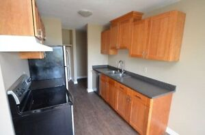 2-BED RENOVATED  w balcony-June 1st 144ave
