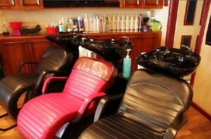 Hair and beauty salon for sale Penrith Penrith Area Preview