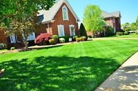 30$ Lawn Care / Landscaping Services
