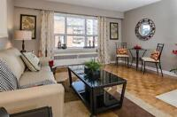 Enjoy the best of Ottawa! Centretown- Spacious Bachelor