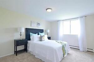 Quiet Residential Area! Minutes to Western -Transit-Downtown Fun London Ontario image 3