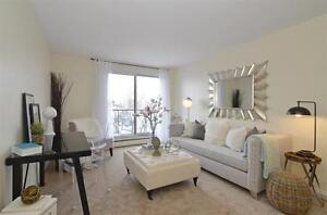 Live Downtown! Great incentives! Call us today! London Ontario image 8