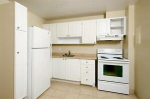 Up to 2 Months Free - Bright & Upgraded Suites in Alta Vista!