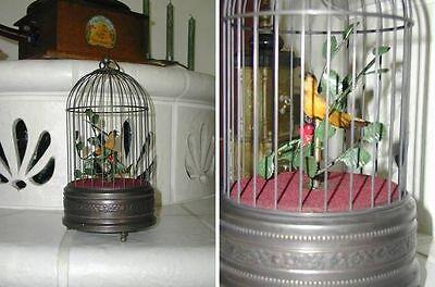Wunderschöne Spieluhr singender Vogel im Käfig!