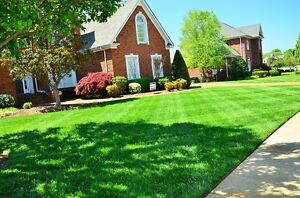 Grass Cutting / Lawn Mowing / Trimming / Weed Control