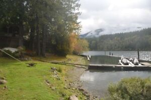 LAKEFRONT HOME ON COWICHAN LAKE!!