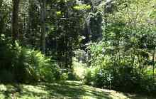 50 Acres Rainforest & small Cabin (Under Offer until 19-5-16) Maleny Caloundra Area Preview