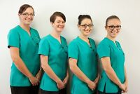 Collingwood Homecare Services: Light Cleaning/Meals/Laundry