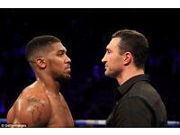 Wembley Hotel for Anthony Joshua and Wladimir Klitschko fight