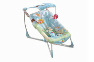 Fisher-Price Soothe & Go Bouncy Seat / chair