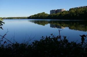 254 Freshwater Trail Lakefront lot