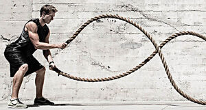 NEW 50ft x 2in Strength Training Rope with BONUS