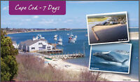 Trent Travel - Cape Cod 7 Day Deluxe Motorcoach Tour