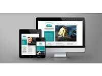 Website design, development and hosting. Wordpress. Local , professional and affordable