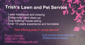 Lawn Dethatching / Spring clean