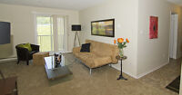 Pet friendly rentals! 1 and 2 BDRM apts for rent on Hamilton Rd!