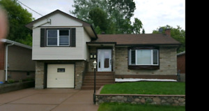 Large One Bedroom Basement Apartment Available Immediately
