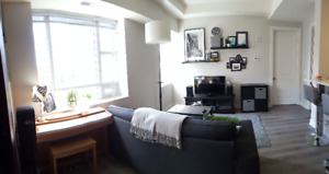 1 bedroom condo downtown close to McMaster