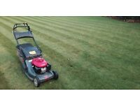 Lawn Care & Turfing