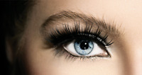 Unique Opportunity, Searching for Lash Technician & Microblading