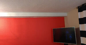 Fall Special! Reliable Professional Painters. Affordable Rate! Oakville / Halton Region Toronto (GTA) image 6