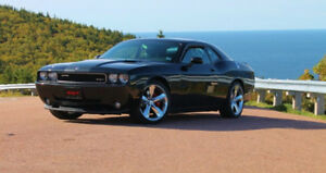 2009 Dodge  Challenger  SRT 8