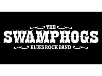 BASS PLAYER WANTED for The SWAMPHOGS Blues Rock Band