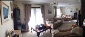 Whole living room set up