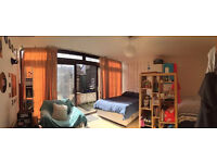 Looking For Friendly Room in a Shared House in Spring Walk, E1