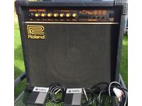 ROLAND DAC-50D Modelling Amplifier