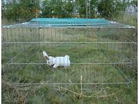 Metal Rabbit Run/enclosures