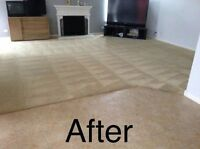 CARPET CLEANER, UPHOLSTERY, RUGS, MATTRESS, TILE AND GROUT