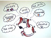 Is your dog scared of fireworks, thunder, vets, the car etc.? Now you can learn to help them cope
