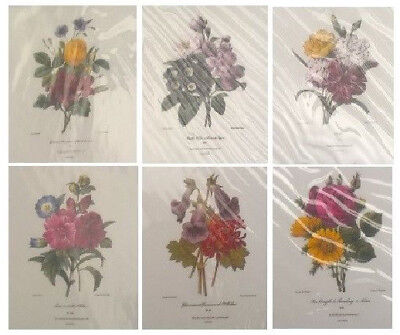 SET of (6) Floral Art Prints FRAME READY Redoute Bouquets 11x14 NEW Flower Print
