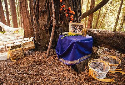 Perfekt inszenierte Romantik an idyllischen Naturschauplätzen (Bilder: Coyote & Saint, Ryan Polei |CC BY-SA)