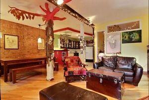 Chambre à louer dans une colocation / Plateau - Berri-UQAM