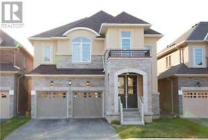 6 OXENDON RD Brampton, Ontario