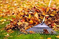AVAILABLE TO RAKE LEAVES OR CLEAN FLOWER BEDS
