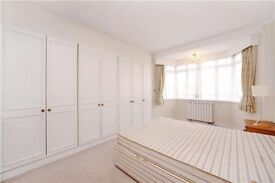 Massive tidy Room in St John's wood avaiable 1/08/2018