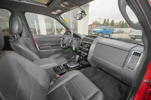 2011 Ford Escape Limited Moose Jaw Regina Area image 13