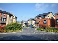 5 HMO STYLE PROPERTIES AVAILABLE BOUGHT AS A PACKAGE or INDIVIDUALLY