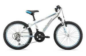 WANTED kids mountain bike