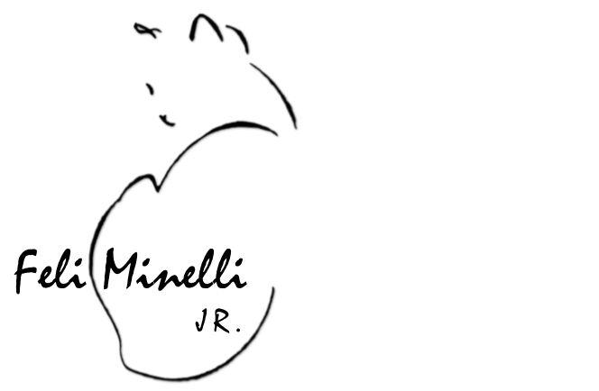 Feli Minelli Fashion