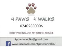 Dog Walker 4 Paws 4 Walks