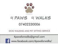 Dog Walker, Pet sitter - 4 PAWS 4 WALKS