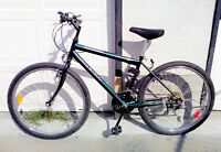 Green Raleigh mountain bike for sale